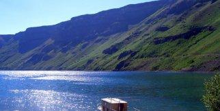 Van Gölü İnci Kefali-Pearl Mulet of the Lake Van